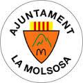 Escut Ajuntament de la Molsosa