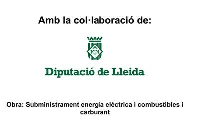 PROGRAMA D'ARRENDAMENTS I SUBMINISTRAMENTS DE LA DIPUTACIÓ DE LLEIDA 2017,2018 I 2019